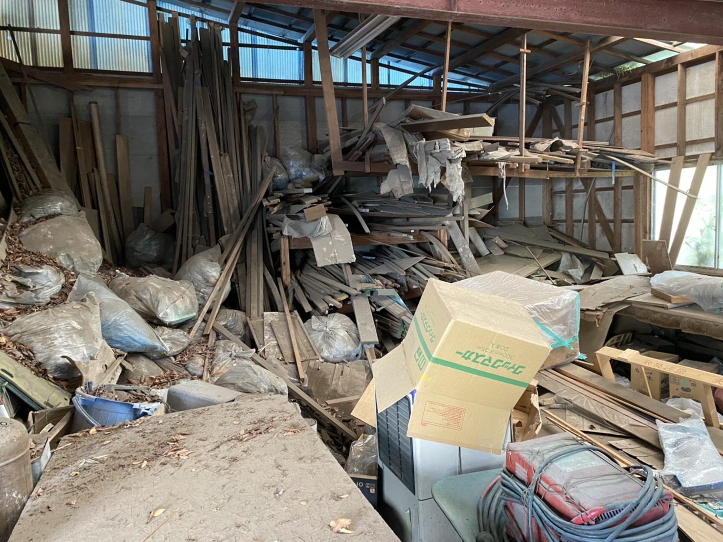大量の木材の回収前